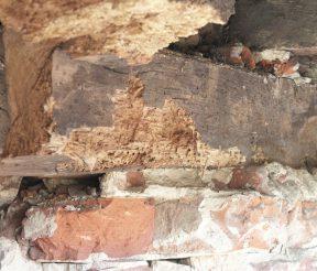 Holztragwerk2 Trawny